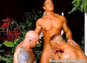 hunks, muscle, sex, group, jocks, cocks,Hunk / Big Muscles Buff Gay Sex In...